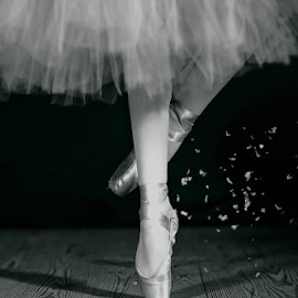 On Toe by Sharon Fuscellaro Canale - People Body Parts ( shoes, girl, wood, black and white, ballerina, ballet )