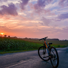 Bike  by Ilya Bogdanets - Transportation Bicycles ( bike road sunset, , golden hour, sunset, sunrise )