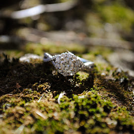 Diamond in the rough by Fawnia Celone - Wedding Other ( ring, nature, diamonds, fall, moss, engagement )