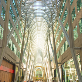 The Allen Lambert Gallery in Toronto by Robert Machado - Buildings & Architecture Other Interior ( famous, detail, hall, allen lambert galleria toronto, toronto, street, architecture, lambert, business, attraction, heritage, modern, allen, st., allen lambert, atrium, skyscraper, tourists, passage, general view, glass, place, allen lambert gallery toronto, downtown, sightseeing, site, building, canada, allen lambert gallery, gallery, visitors, ontario, crystal, pass, architect, landmark, allen lambert galleria, santiago calatrava, bay, galleria, canadian, architectural, core, bce place, high, calatrava, allen lambert galleria calatrava )