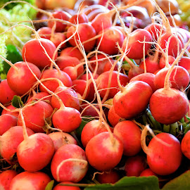 Radishes at an outdoor market in Chile by Tyrell Heaton - Food & Drink Fruits & Vegetables ( validivia, chile, radishes, market, food, vegetables, radish )