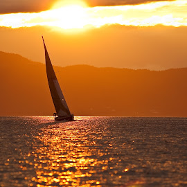 Sunset sailer..! by Svein Erik Bakken - Landscapes Travel ( water, sailing, sunset, ocean, sailboat, landscape, norway, device, transportation,  )