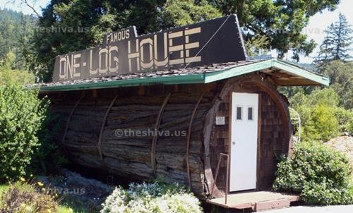 one-log-house (2)