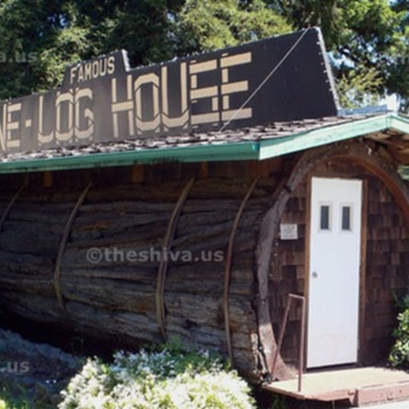 The house made from one log