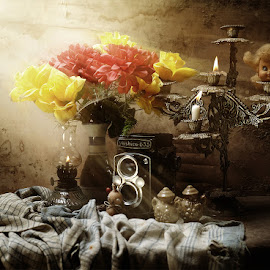 all old by Aruna Queensya photowork - Artistic Objects Other Objects ( old, camera, artistic )