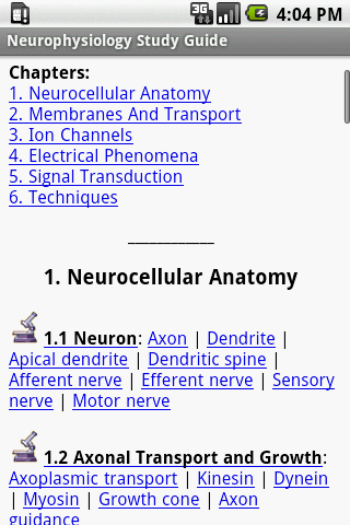 Neurophysiology Study Guide
