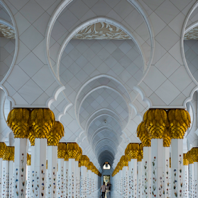 Piller of Sheikh Zayed Mosque by Aamir Munir - Buildings & Architecture Places of Worship (  )