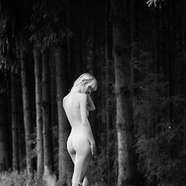 nude and pure by Carlos Dennis - Nudes & Boudoir Artistic Nude ( pure, nude, black and white, female, outdoor, forest )