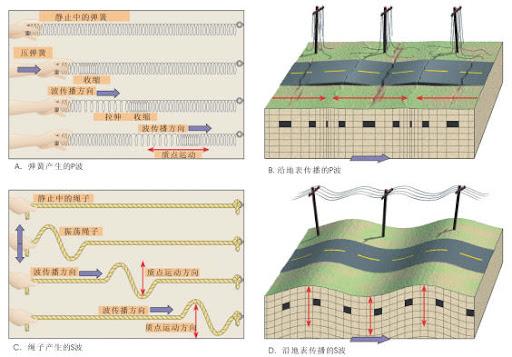 地震波P波和S波的卡通示意图