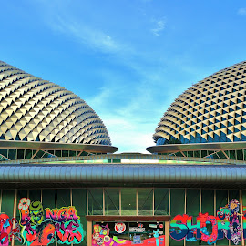 by Koh Chip Whye - Buildings & Architecture Other Exteriors ( singapore, esplanade, art theatres )