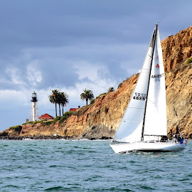 Sailing by Kathy Suttles - Sports & Fitness Other Sports