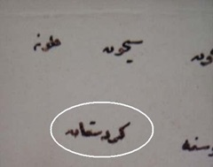 ido_sansura_kurdistan_4