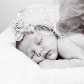 Sleeping Angel by Alan Evans - Babies & Children Babies ( sleeping baby, baby girl, aj photography, sleeping, feathers, newborn, angel, newborn baby, hair piece, tutu, headband, baby, baby photography,  )