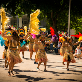 Cariwest Fest by Joseph Law - News & Events Entertainment ( parade, caribbean festival, art festival, the skill dansers, 30th annual, in edmonton )