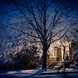 Winter Passing by Hoover Tung - Buildings & Architecture Homes ( snowfall, home, seasonal, frost, house, frozen, landscape, lights, cold, nature, tree, snow, weather, illumination, evening, light, covered, xmas, beautiful, white, christmas, snowy, holiday, winter, window, season, blue, outdoor, trees, night, , relax, tranquil, relaxing, tranquility )