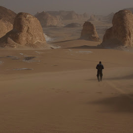 Alone in the Desert by Yumna Salah - Landscapes Deserts ( desert, sand dunes, oasis, alone, sand structures )