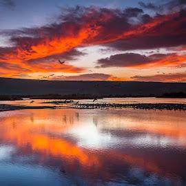 Burning skies by Tzvika Stein - Landscapes Sunsets & Sunrises
