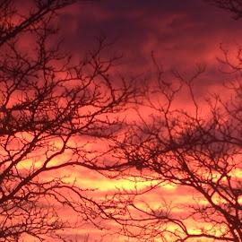 Morning sky by Julee Lillard - Landscapes Cloud Formations