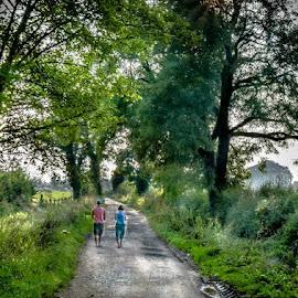 Summer evening walk by Brian Noel - Landscapes Travel