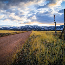 by Becca McKinnon - Landscapes Prairies, Meadows & Fields ( clouds, ranch, dirtroad, mountains, grass, road, fields )