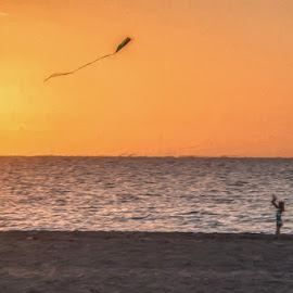 Kite Flier by Mike Moss - Landscapes Beaches