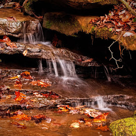 Fall begins by Lowell Griffith - Nature Up Close Rock & Stone ( stream, fall, whitewater, rocks )