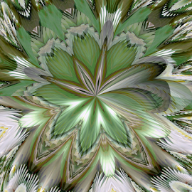 FWLK 1 by Tina Dare - Digital Art Abstract ( abstract, greens, patterns, manipulated, designs, distorted, spiky, fractal, curves, shapes )