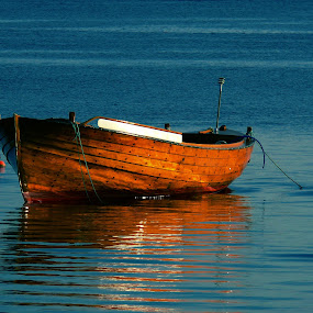 Boat by Doreen L - Transportation Boats ( water, blue, boats, skjærhalden, norway, fjord,  )