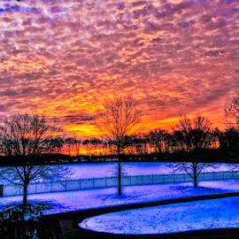 Winter Morning Sunrise by Doreen Rutherford - Landscapes Sunsets & Sunrises ( blue, orange. color )