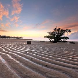 Garis-Garis by Gede Widiarsa - Landscapes Beaches ( bali, mertasari beach, sanur )