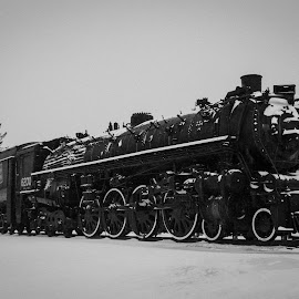 Frozen in time by Denver Green - Transportation Trains ( winter, snow, rail, train, black&white )