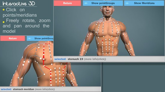 Easy Acupuncture 3D -LITE - screenshot
