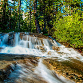 Horsetail Falls by Trevor Fairbank - Landscapes Waterscapes ( waterfalls, nature, green, waterfall, pine trees, horsetail falls, lake tahoe )