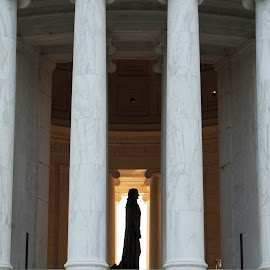 Jefferson Memorial by Austin Lawler - Buildings & Architecture Statues & Monuments ( dc, statue, monument, washington dc, thomas jefferson memorial, pillars )