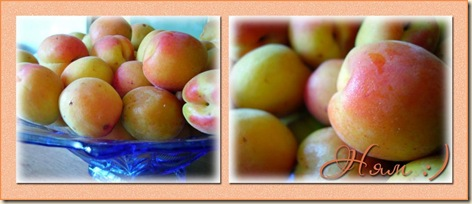 абрикоски