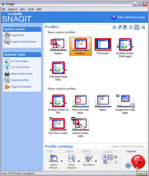 SnagItScreenCapture