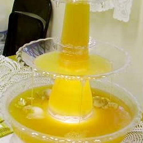 Pineapple Juice Lemon Juice Sugar Water Punch Recepten | Yummly