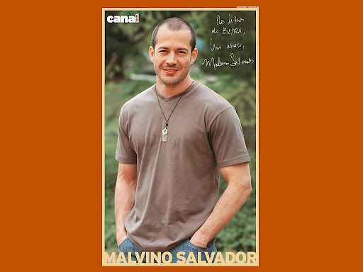Malvino Salvador Desktop