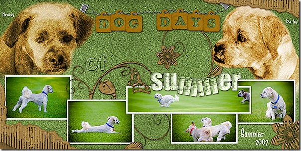 dog_days_2page_web