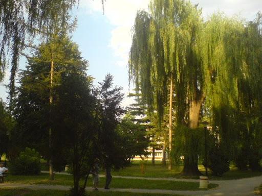 Soko banja Soko+Banja,Park+3