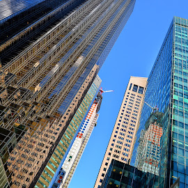 Downtown Manhattan by Ferdinand Ludo - Buildings & Architecture Office Buildings & Hotels ( clear sunny day, tall buildings, skyscraper, glass buildings )
