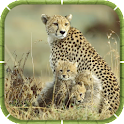 Wild Animals Jigsaw Puzzle icon