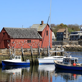 Motif #1 - Rockport, Ma by Caitlin Perry - Landscapes Waterscapes ( water, harbor, sandrabullock, boats, buoys, massachusetts, motifnumber1, theproposal, downtownrockport, motif1, ryanreynolds, summer, rockport )