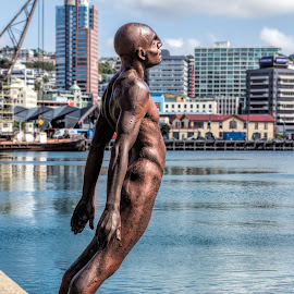 About to fly by Vibeke Friis - Buildings & Architecture Statues & Monuments ( statue, quay, wellington harbour, waterfront, new zealand )
