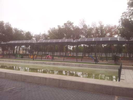 Bosque Solar