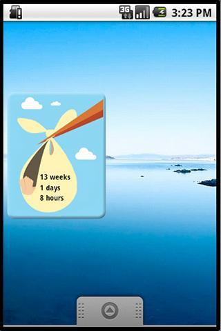 Pregnancy Due Date Countdown