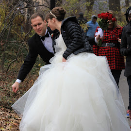 Tangled on Bush by Tammy Jones Perdue - Wedding Other ( wedding, holiday's, new york, bride and groom, central park,  )