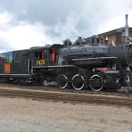#7470 by Janice Burnett - Transportation Trains ( steam locomotive, steam engine, railway, railroad, steam train )
