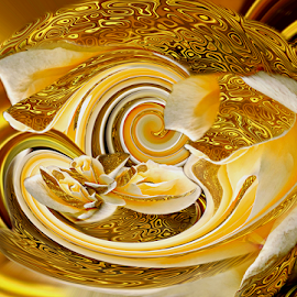Golden twirl by Carmen Velcic - Digital Art Abstract ( abstract, orange, roses, gold, flowers, digital, twirl )