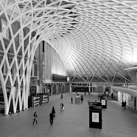 King's Cross by Night by Cristi Radulescu - Buildings & Architecture Other Interior